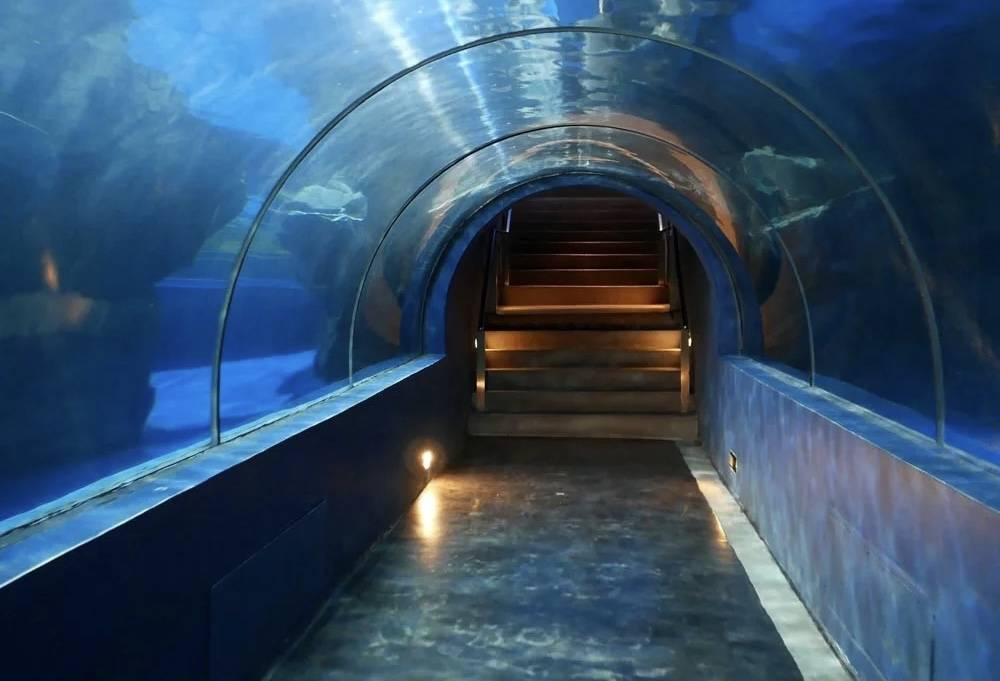 Jasa-pembuatan-Aquarium-air-tawar-FILEminimizer
