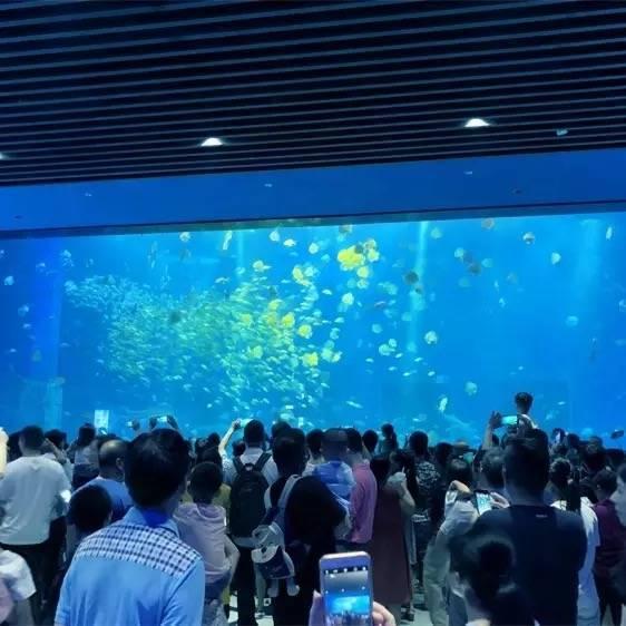 Jual-akuarium-bawah-laut-seperti-di-jakarta-FILEminimizer
