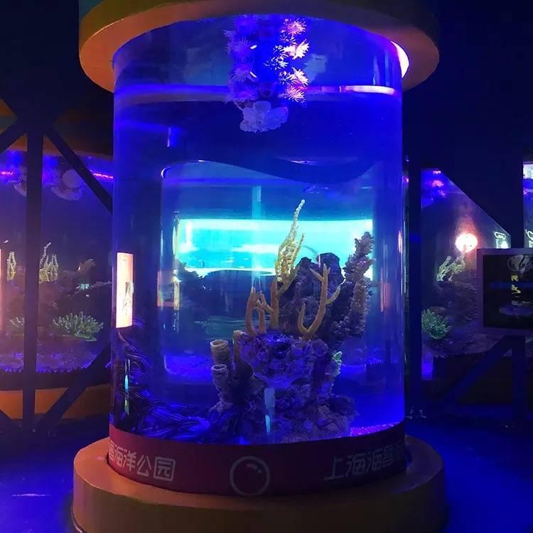 Jual-aquarium-dinding-besar-murah-FILEminimizer