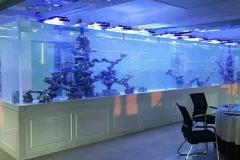 Ukuran-aquarium-besar-dan-berkualitas-cocok-untuk-hotel-FILEminimizer
