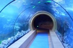 jasa-Aquarium-air-laut-dengan-ukuran-khusus-FILEminimizer